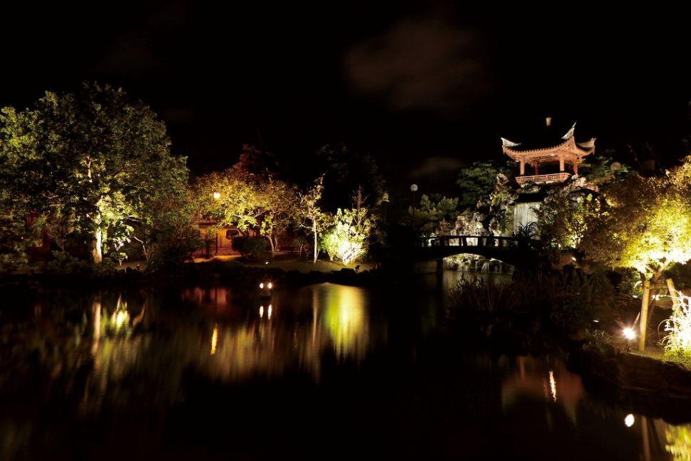 福州園 ライトアップ1